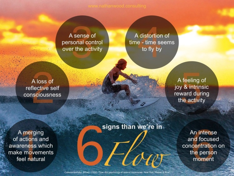 6 Signs That We're In A Flow State | Nathan Wood Consulting