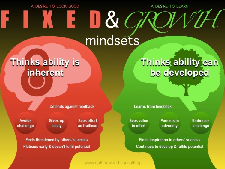The Differences Between Fixed and Growth Mindsets | Nathan Wood Consulting