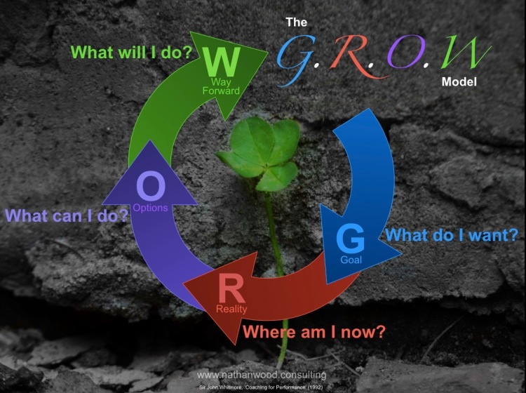 The GROW Model | Nathan Wood Consulting