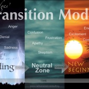 Bridges Transition Model | Nathan Wood Consulting