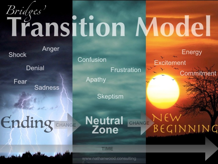 Bridges Transition Model   Nathan Wood Consulting